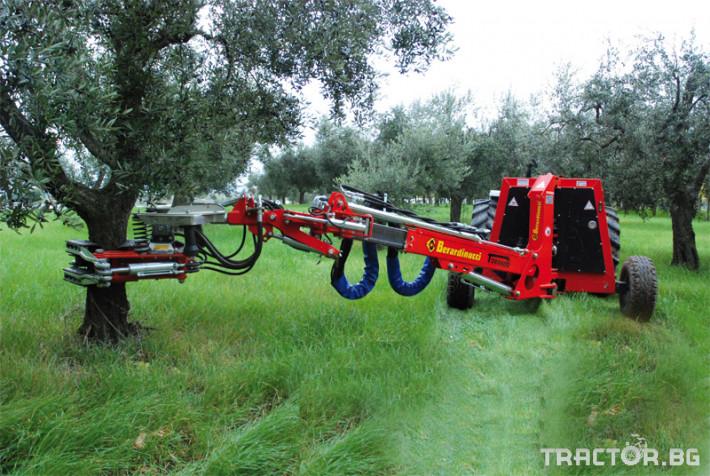 Машини за лозя / овошки Вибрираща машина за бране Berardinucci модел  TORNADO 1