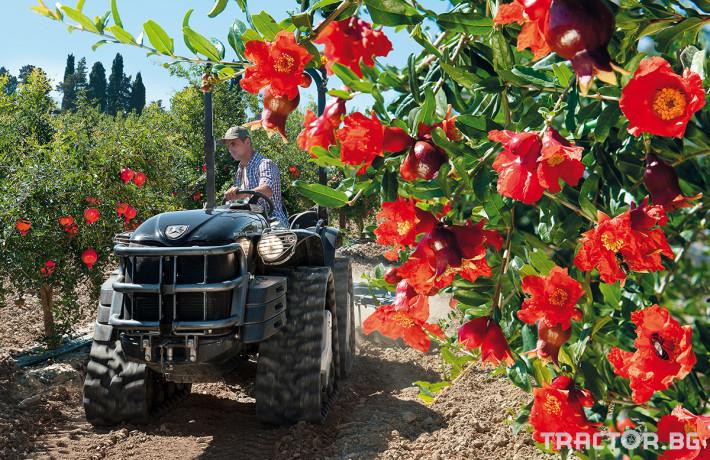 Трактори Antonio Carraro MACH4 1