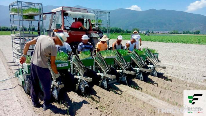 Машини за зеленчуци Полуавтоматична разсадопосадачна машина FEDELE BIG 2 - Трактор БГ