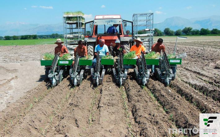 Машини за зеленчуци Полуавтоматична разсадопосадачна машина FEDELE BIG 5 - Трактор БГ