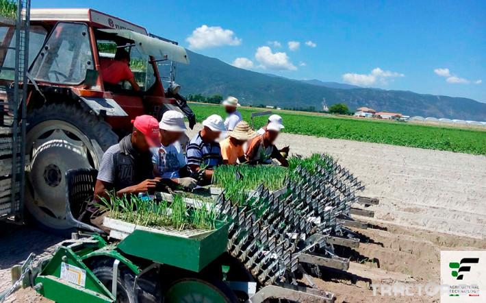 Машини за зеленчуци Полуавтоматична разсадопосадачна машина FEDELE BIG 6 - Трактор БГ