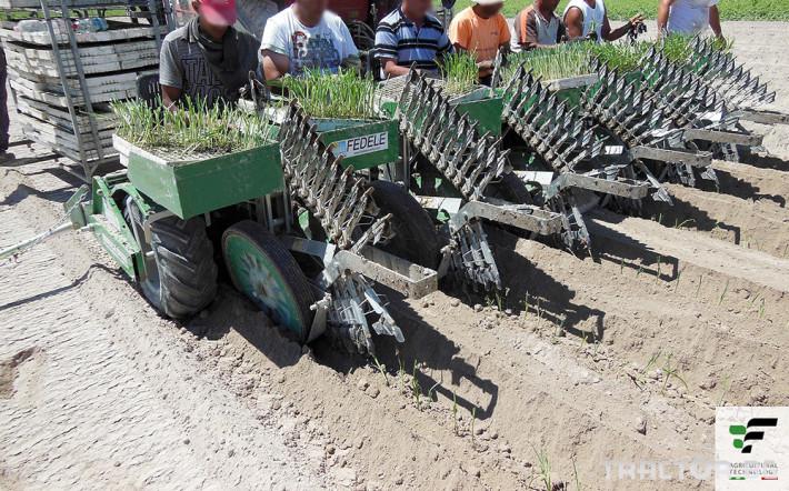 Машини за зеленчуци Полуавтоматична разсадопосадачна машина FEDELE BIG 7 - Трактор БГ