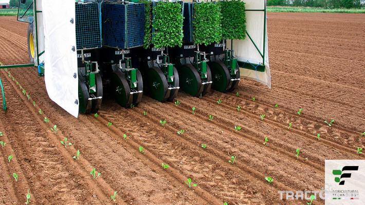 Машини за зеленчуци Разсадопосадъчна машина FEDELE модел FAST 7