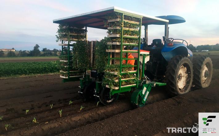 Машини за зеленчуци Разсадопосадъчна машина FEDELE модел FAST 11