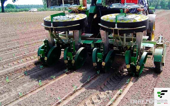 Машини за зеленчуци Разсадопосадъчна машина FEDELE модел IPER DUPLEX 1