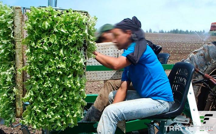 Машини за зеленчуци Разсадопосадачна полуавтоматична машина MAX 6