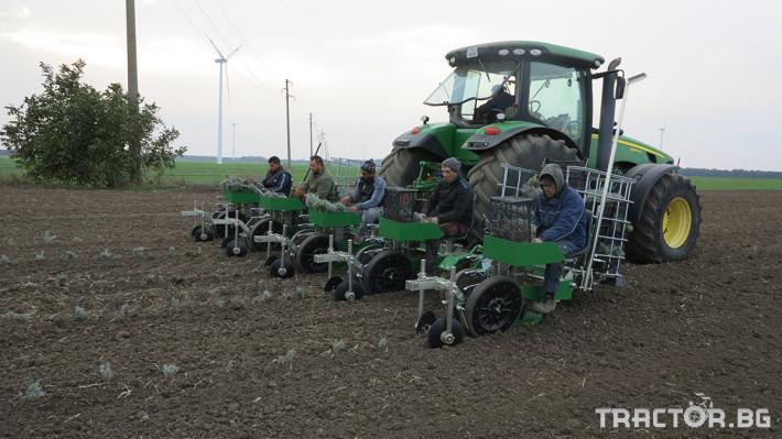 Машини за зеленчуци Разсадопосадачна машина за лавандула PLANT 1