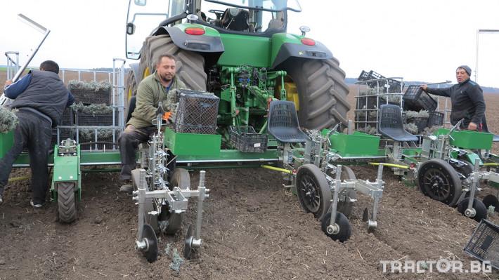 Машини за зеленчуци Разсадопосадачна машина за лавандула PLANT 4