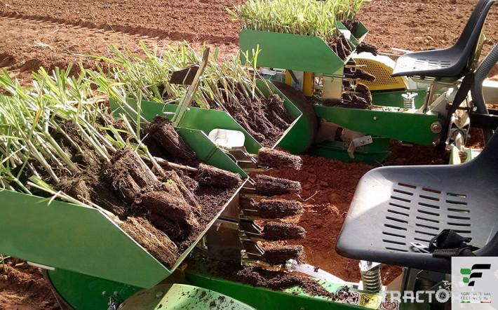 Машини за зеленчуци Разсадопосадачна машина за лавандула PLANT 11