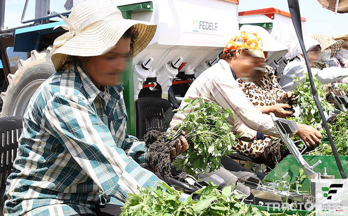 Машини за зеленчуци Разсадопосадачна машина за лавандула PLANT 12